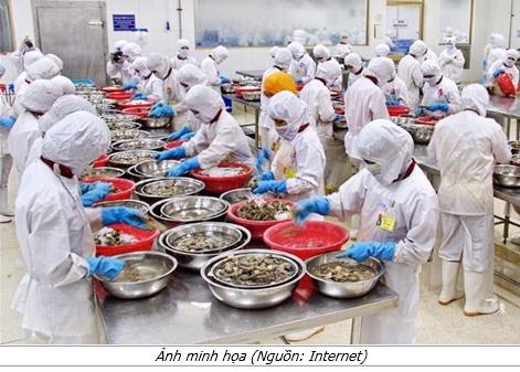 Doanh nghiệp Việt Nam muốn xuất khẩu thực phẩm vào thị trường Mỹ cần nắm rõ những gì?