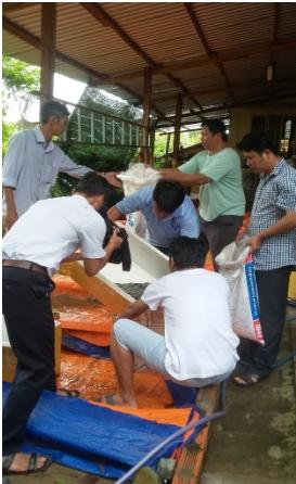 Trung tâm Khuyến nông chuyển giao lươn giống, hỗ trợ nông dân phát triển mô hình nông nghiệp đô thị theo hướng an toàn thực phẩm