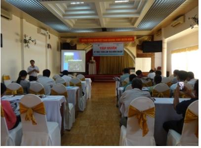 Tập huấn kỹ thuật trồng cam theo hướng VietGAP