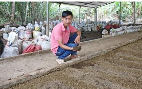 Thuận Thới: Một Thạc sĩ Công nghệ Sinh học về quê thành lập Hợp tác xã nông nghiệp