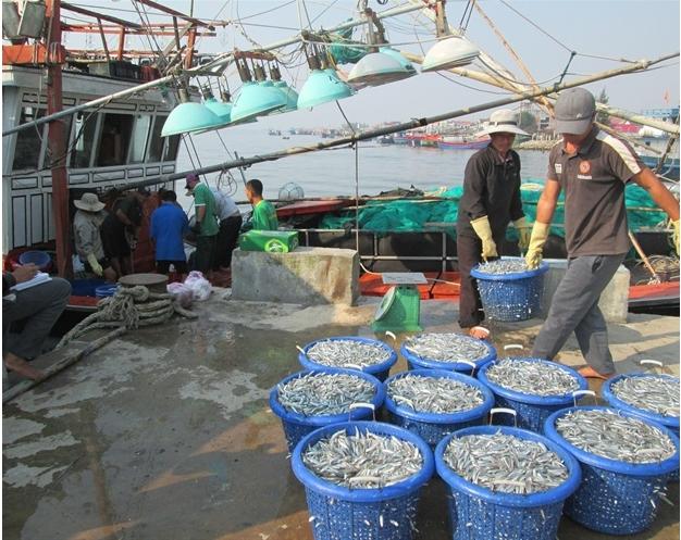 Đưa xuất khẩu thủy sản vào quy củ