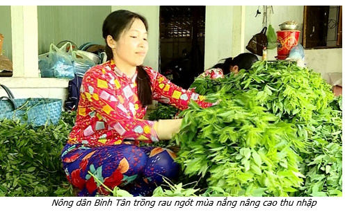 Bình Tân: Tái cơ cấu ngành nông nghiệp tạo tiền đề thúc đẩy phát triển kinh tế – xã hội địa phương