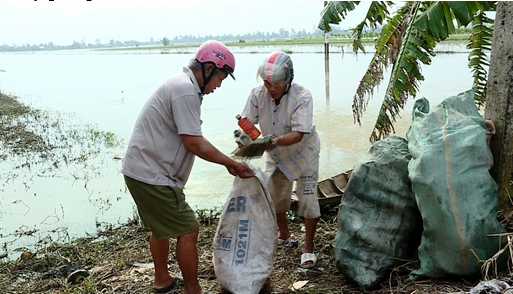 Thành Trung triển khai các giải pháp bảo vệ môi trường, góp phần đạt chuẩn nông thôn mới nâng cao